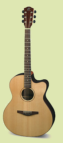 avalon as200ce acoustic electric guitar guitars pedals amps effects. Black Bedroom Furniture Sets. Home Design Ideas
